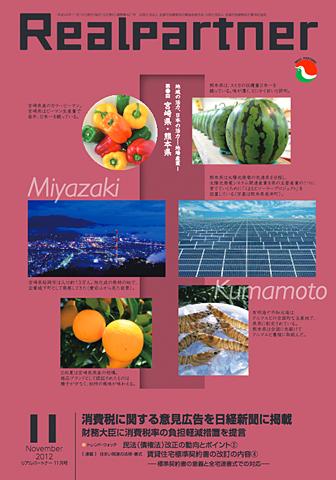 リアルパートナー2012年度年11月号:表紙